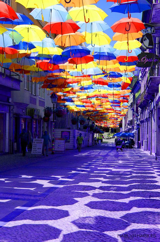 guarda-chuvas-agueda-1